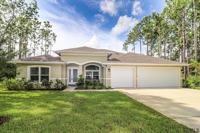 Palm Coast Single Family Home For Sale: 13 Eric Drive