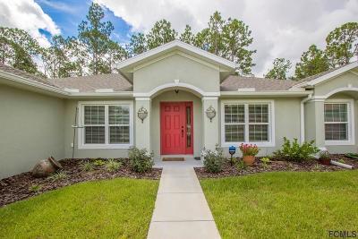 Palm Coast Single Family Home For Sale: 31 Edison Lane