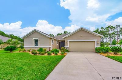 Palm Coast Single Family Home For Sale: 103 Vireo Dr