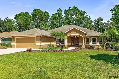 Palm Coast Single Family Home For Sale: 30 Elias Lane