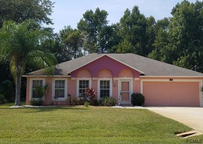 Palm Coast Single Family Home For Sale: 132 Sea Trail