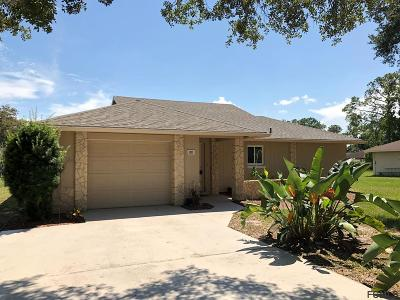 Palm Coast Single Family Home For Sale: 55 Blairsville Drive