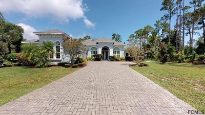 Palm Coast Single Family Home For Sale: 6 Peyton Place