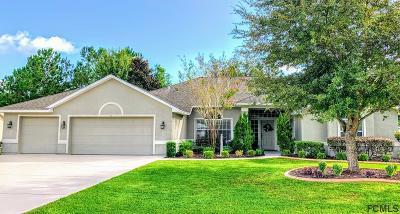 Palm Coast Single Family Home For Sale: 11 Buffalo View Lane
