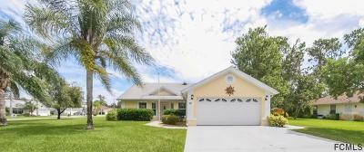 Palm Coast Single Family Home For Sale: 50 Banner Ln