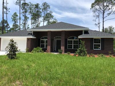 Palm Coast Single Family Home For Sale: 47 Riverview Drive