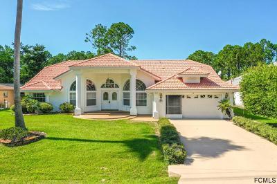 Palm Coast Single Family Home For Sale: 95 Barrington Dr