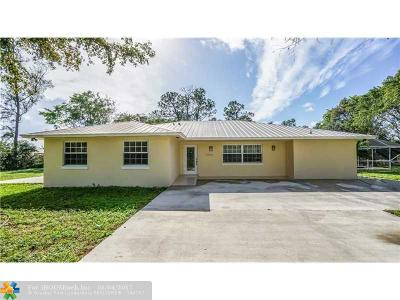 Lake Worth Single Family Home For Sale: 9394 Rodeo Dr