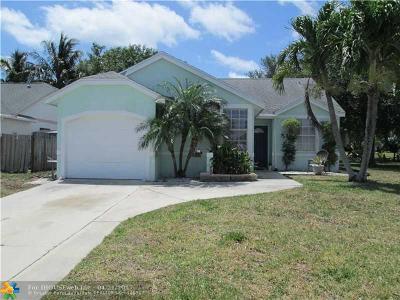 Boynton Beach Single Family Home For Sale: 28 Misty Meadow Dr
