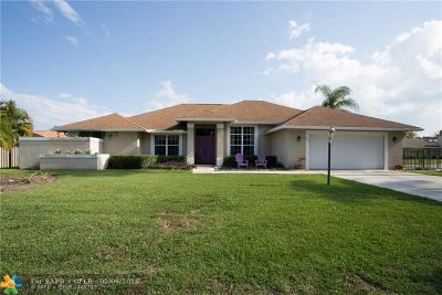 Boynton Beach Single Family Home For Sale: 4053 Alpinia Ct