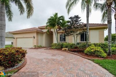 Pembroke Pines Single Family Home For Sale: 6619 SW 192nd Ave