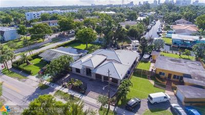 Fort Lauderdale Single Family Home For Sale: 206 SW 18th Ave