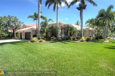 Weston Single Family Home For Sale: 920 Tradewinds Bnd