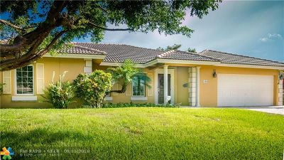 Deerfield Beach Single Family Home For Sale: 1106 NE Little Harbor Drive