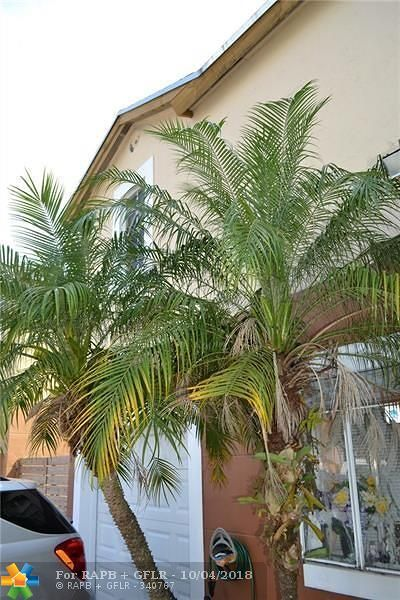 Miami Single Family Home For Sale: 14724 SW 90th Ter