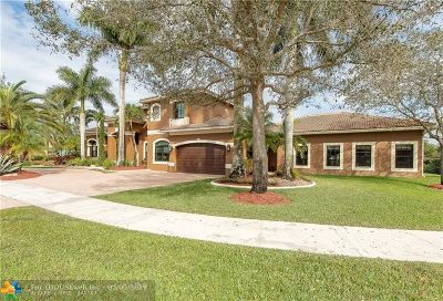 Davie Single Family Home For Sale: 4376 SW 140th Ave