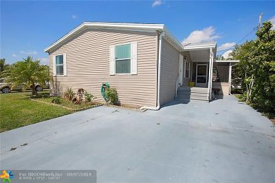 Boynton Beach Single Family Home For Sale: 4191 Meadow View Dr