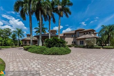 Weston Single Family Home For Sale: 3079 Old Still Ln