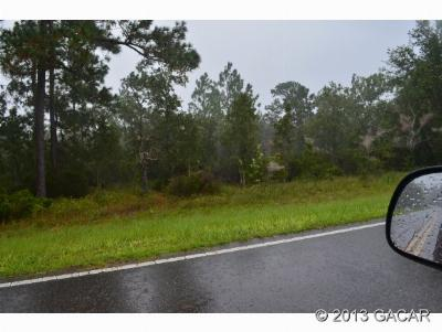 Hawthorne FL Residential Lots & Land For Sale: $29,000