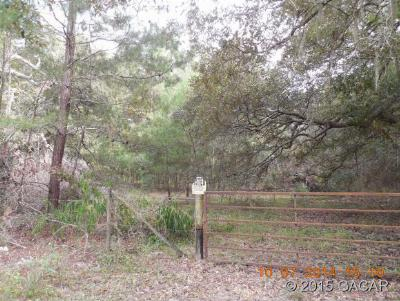 Melrose Residential Lots & Land For Sale: TBD NE County Road 219