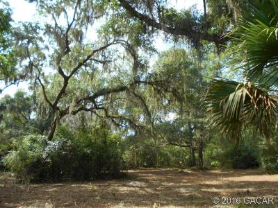 Micanopy Residential Lots & Land For Sale: 120 NE Evans Court