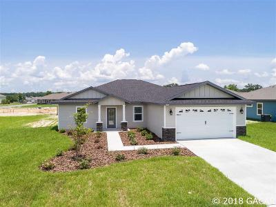 Newberry Single Family Home For Sale: 22982 NW 5th Place