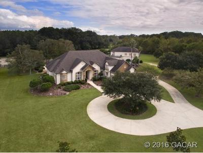 Newberry Single Family Home For Sale: 4209 NW 155th Terrace