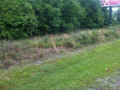Gainesville FL Commercial Lots & Land For Sale: $299,000