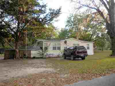 Newberry Single Family Home For Sale: 25933 SW 1st Avenue