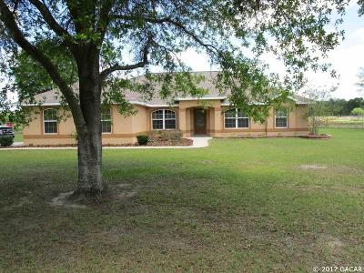 Newberry Single Family Home For Sale: 4517 SW 298th Street