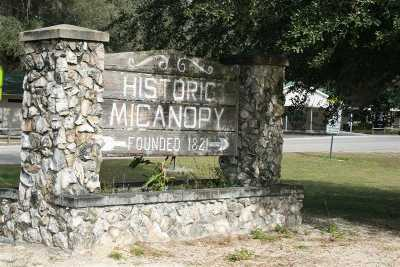 Micanopy Residential Lots & Land For Sale: 12563 SW 17th Drive