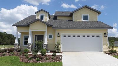 Gainesville Single Family Home For Sale: 6579 SW 95th Street