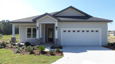 Gainesville Single Family Home For Sale: 9369 SW 65th Place