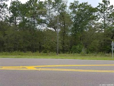 Residential Lots & Land Closed: TBD S HWY 41