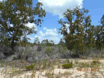 Interlachen FL Residential Lots & Land For Sale: $3,750