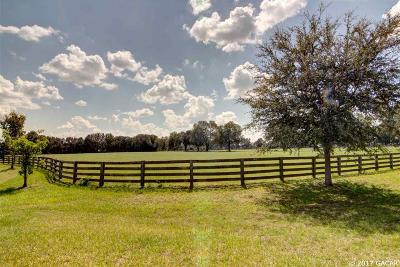 Alachua Residential Lots & Land For Sale: Lot 5 - 9961 NW 208th Terrace