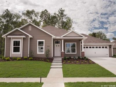 Alachua Single Family Home For Sale: 16764 NW 167th Drive