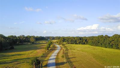 Alachua Residential Lots & Land For Sale: Lot 11 20750 NW 100th Lane