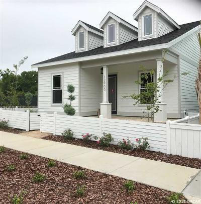 Newberry Single Family Home For Sale: 12900 SW 7th Avenue
