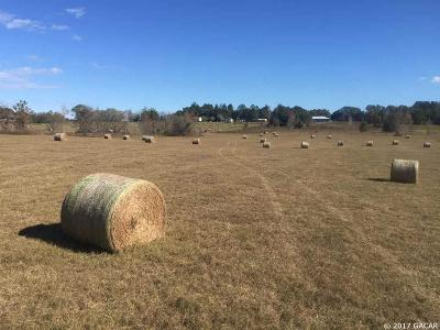 Alachua Residential Lots & Land For Sale: tbd NW 218th Lane