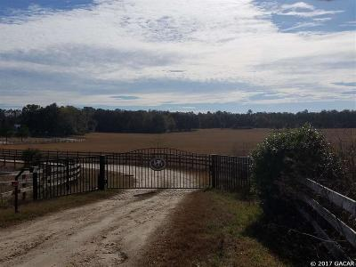 Alachua Residential Lots & Land For Sale: 13527 NW 222ND