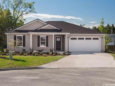 Newberry Single Family Home For Sale: 861 NW 254th Drive