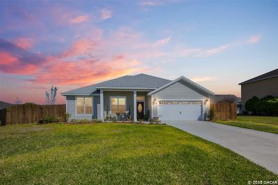 Newberry Single Family Home For Sale: 22990 NW 7TH
