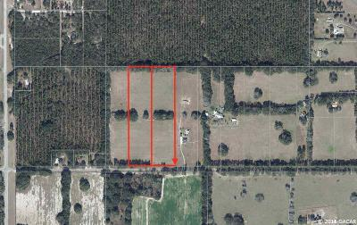 Alachua Residential Lots & Land For Sale: 24326 NW 78th Avenue