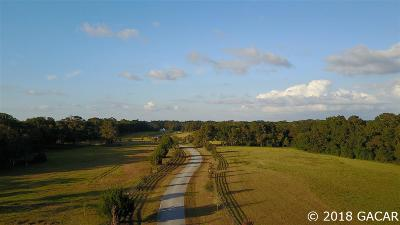 Alachua Residential Lots & Land For Sale: Lot 19 9564 NW 208th Terrace