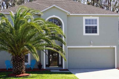 Newberry Single Family Home For Sale: 24391 SW 13th Lane
