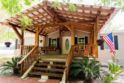 Newberry Single Family Home For Sale: 2409 SW 186th Street