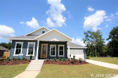 Alachua Single Family Home For Sale: 16870 NW 167th Drive