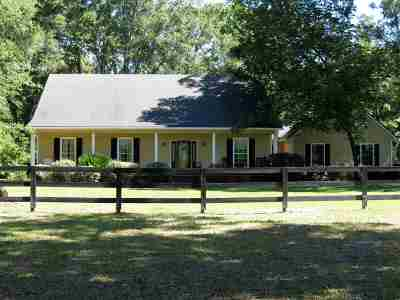 High Springs Single Family Home For Sale: 26042 NW 166th Avenue