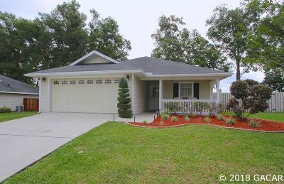 Newberry Single Family Home For Sale: 943 NW 254 Drive